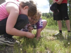 Camp Finland kids making discoveries